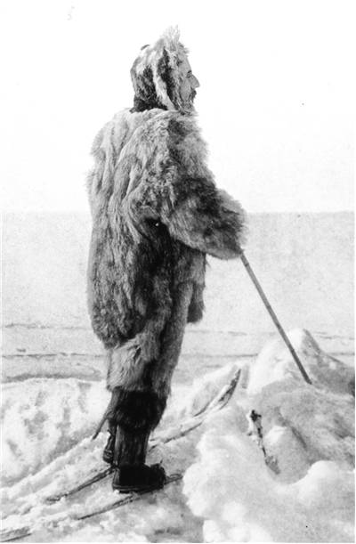Picture Of Roald Amundsen Famous Explorer
